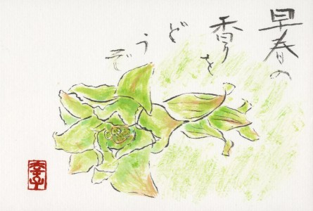 Prašau džiaugtis ankstyvo pavasario skoniu! Yukiko Kosuge