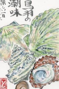 Jūros dovanos. Toshiko Nakamura